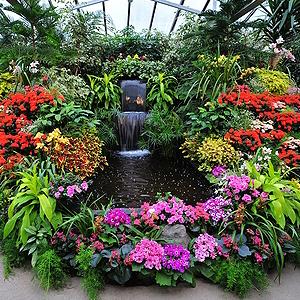 Wintergarten bepflanzen