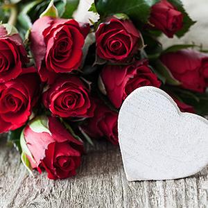 Balkonpflanzen mit roten Blüten