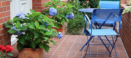 Umzug mit Balkonpflanzen