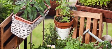 Vertikales Gärtnern